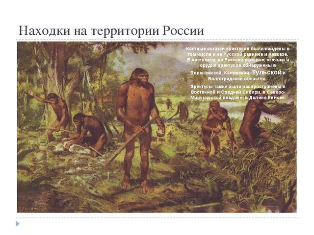 Находки на территории России Костные остатки эректусов были найдены в том чи...