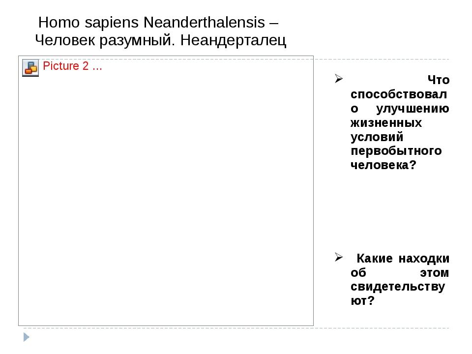 Homo sapiens Neanderthalensis –  Человек разумный. Неандерталец  Что способс...