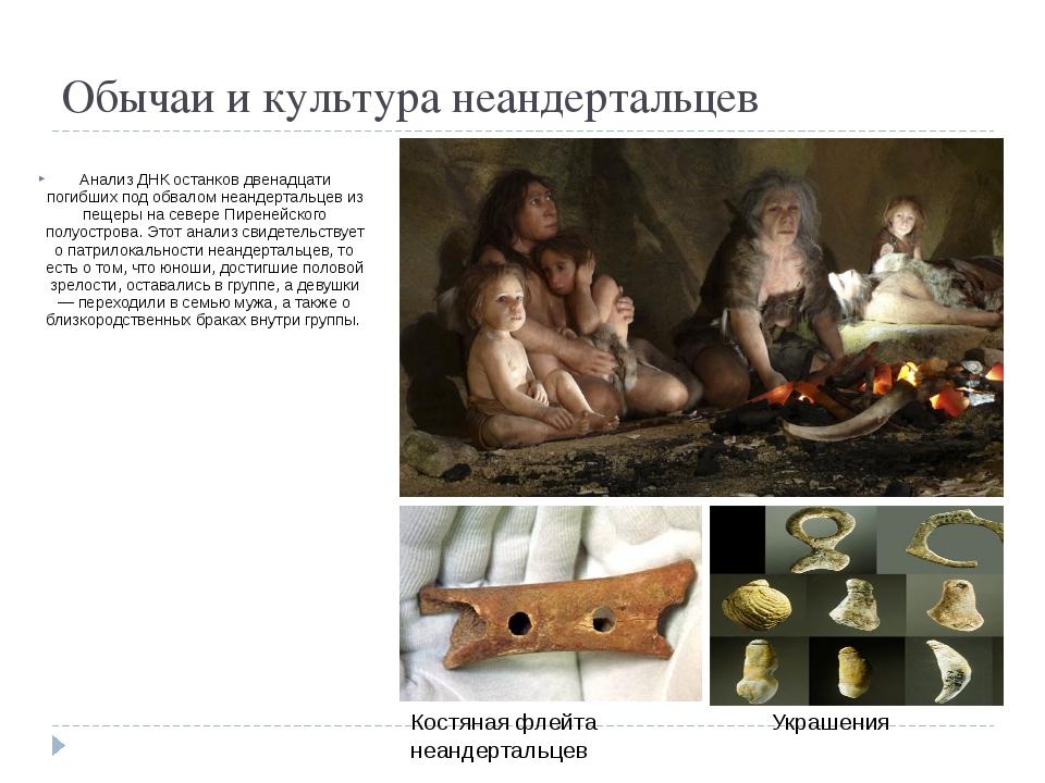 Обычаи и культура неандертальцев Анализ ДНК останков двенадцати погибших под...