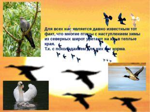Для всех нас является давно известным тот факт, что многие птицы с наступлени