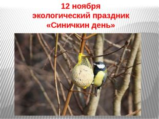 12 ноября экологический праздник «Синичкин день»