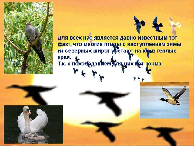 Для всех нас является давно известным тот факт, что многие птицы с наступлени...