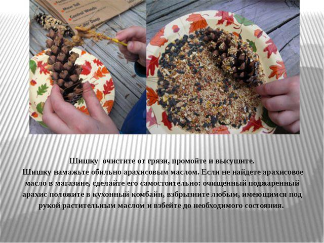 Шишку очистите от грязи, промойте и высушите. Шишку намажьте обильно арахисо...