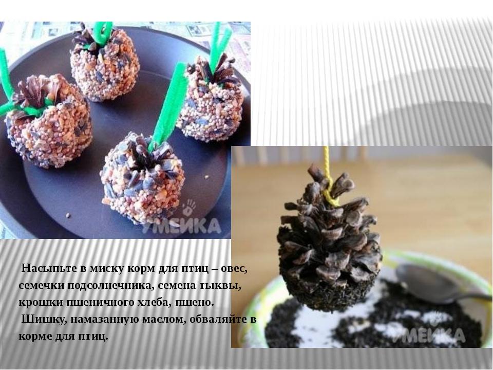 Насыпьте в миску корм для птиц – овес, семечки подсолнечника, семена тыквы,...