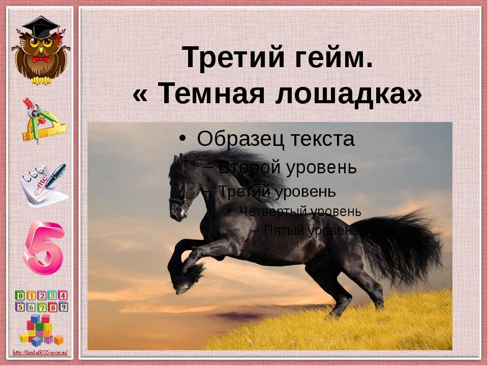 Третий гейм. « Темная лошадка»