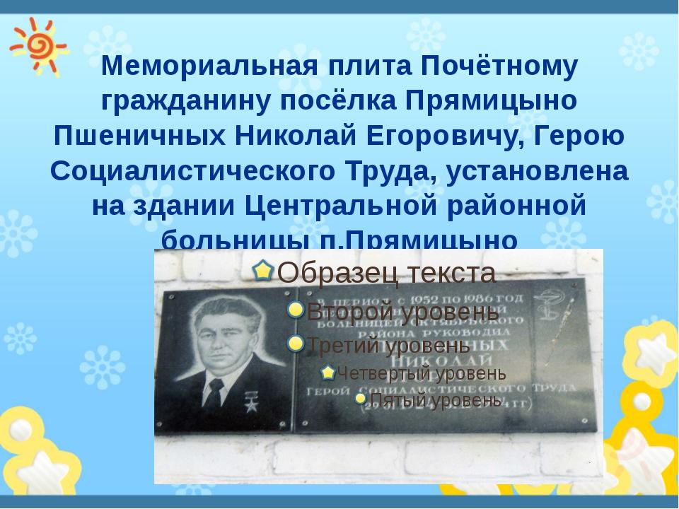 Мемориальная плита Почётному гражданину посёлка Прямицыно Пшеничных Николай Е...