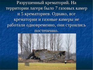 Разрушенный крематорий. На территории лагеря было 7 газовых камер и 5 кремат