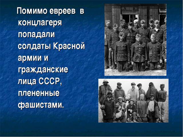 Помимо евреев в концлагеря попадали солдаты Красной армии и гражданские лица...