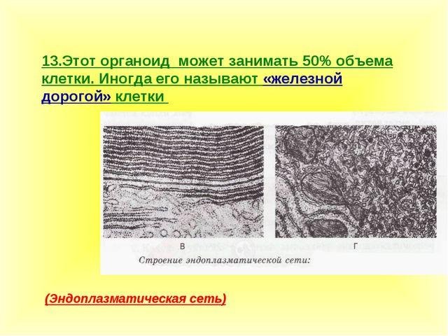 13.Этот органоид может занимать 50% объема клетки. Иногда его называют «желез...