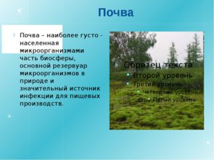 Почва Почва – наиболее густо - населенная микроорганизмами часть биосферы, ос
