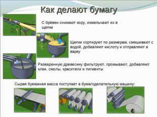 Как делают бумагу С брёвен снимают кору, измельчают их в щепки Щепки сортирую
