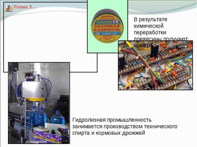 В результате химической переработки древесины получают канифоль Гидролизная п...