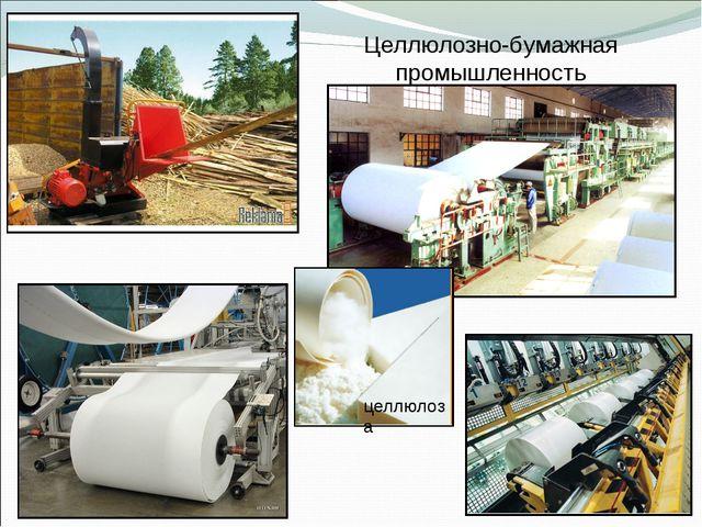 Целлюлозно-бумажная промышленность целлюлоза