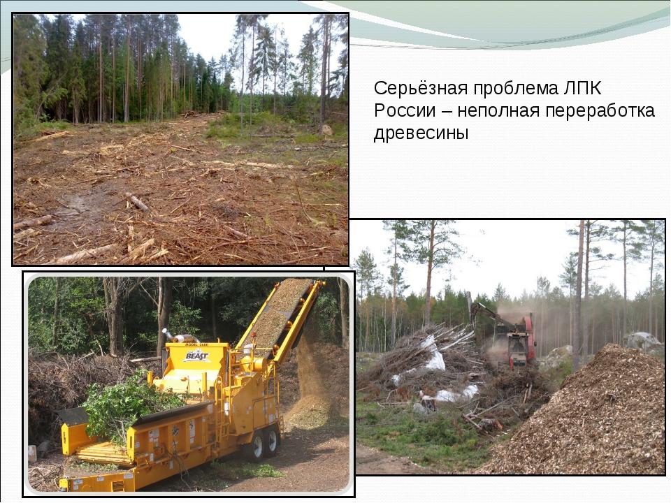 Серьёзная проблема ЛПК России – неполная переработка древесины