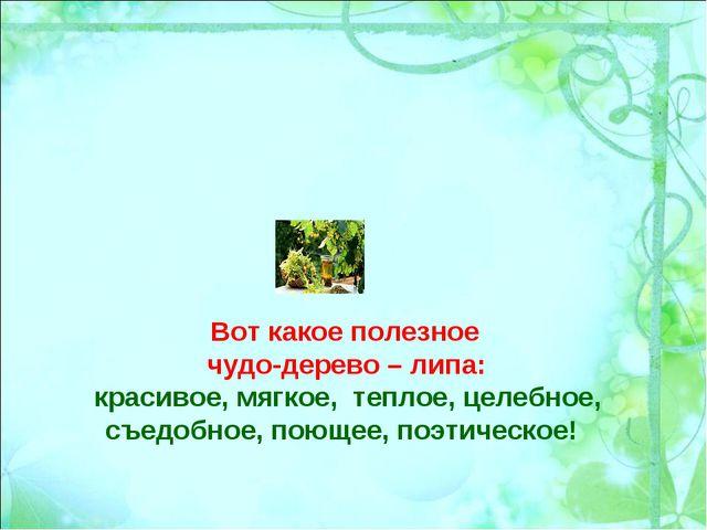 Вот какое полезное чудо-дерево – липа: красивое, мягкое, теплое, целебное, съ...