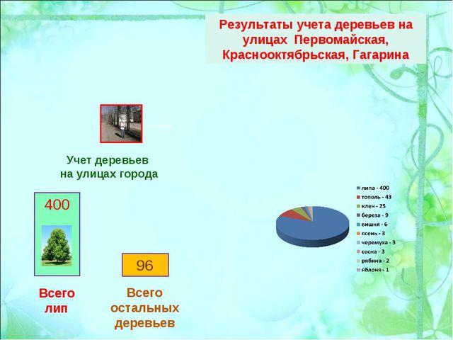 Учет деревьев на улицах города Результаты учета деревьев на улицах Первомайск...