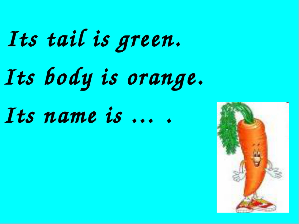 Its tail is green. Its body is orange. Its name is … .