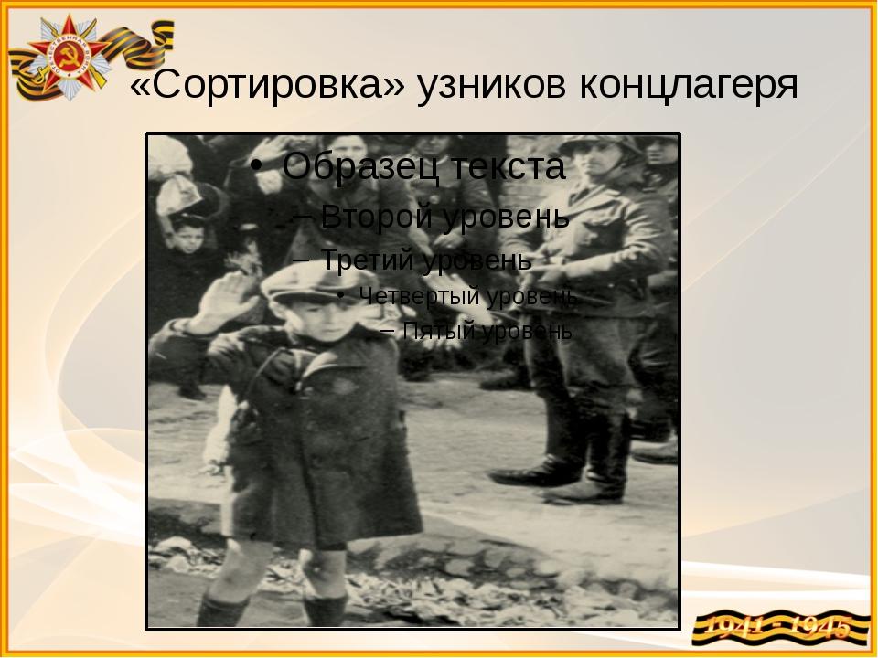 «Сортировка» узников концлагеря
