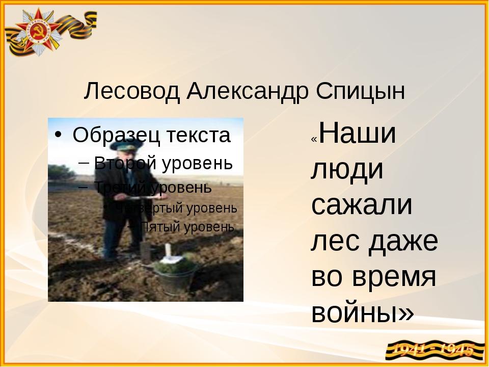 Лесовод Александр Спицын «Наши люди сажали лес даже во время войны»
