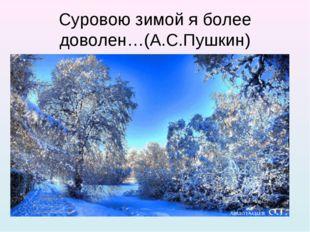 Суровою зимой я более доволен…(А.С.Пушкин)
