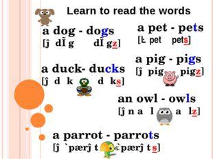 a pet - pets [ə pet pets] a dog - dogs [ə dɒg dɒgz] a pig - pigs [ə pig pigz]
