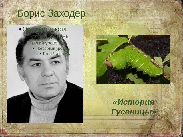 Борис Заходер «История Гусеницы»