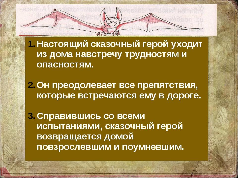 Настоящий сказочный герой уходит из дома навстречу трудностям и опасностям....