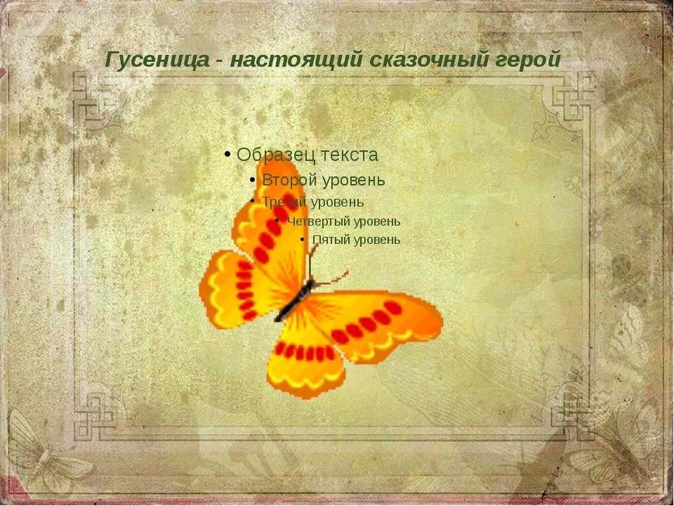 Гусеница - настоящий сказочный герой