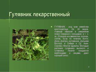 * Гулявник лекарственный ГУЛЯВНИК - род трав семейства крестоцветных. Ок. 90