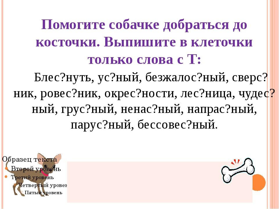 Помогите собачке добраться до косточки. Выпишите в клеточки только слова с Т:...