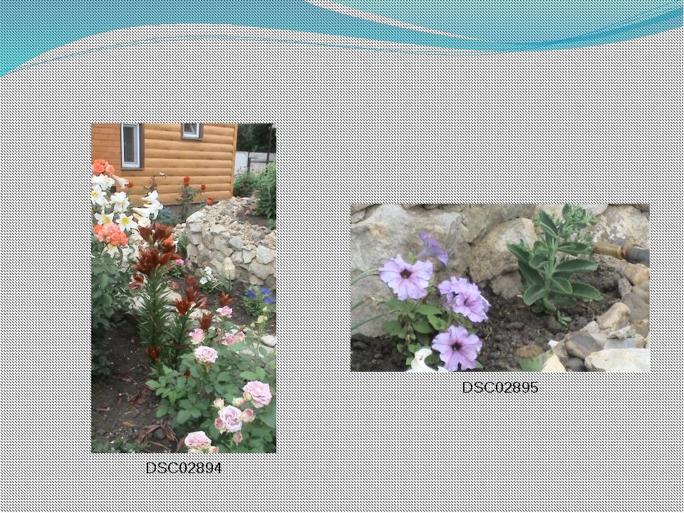 DSC02894 DSC02895