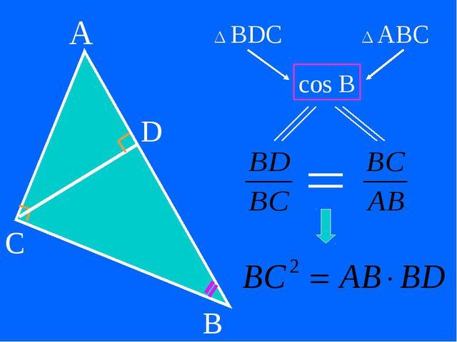 A C B D Δ BDC Δ ABC cos B
