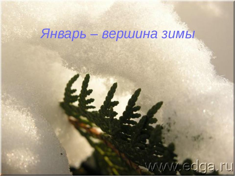 Январь – вершина зимы