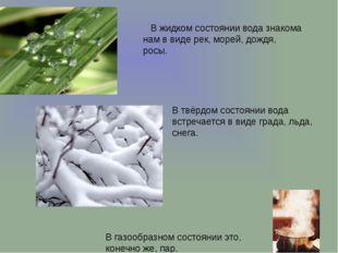 .  В жидком состоянии вода знакома нам в виде рек, морей, дождя, росы. В г