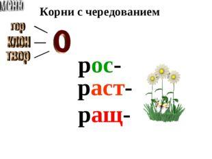 Корни с чередованием рос- раст- ращ-