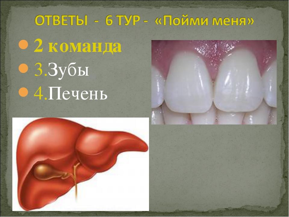 2 команда 3.Зубы 4.Печень