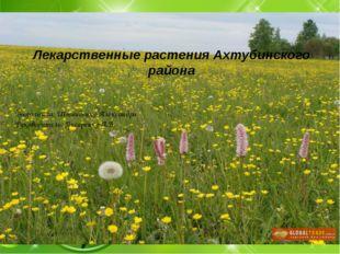 «Лекарственные растения Ахтубинского района» Выполнила : Пашкова Анна Руковод