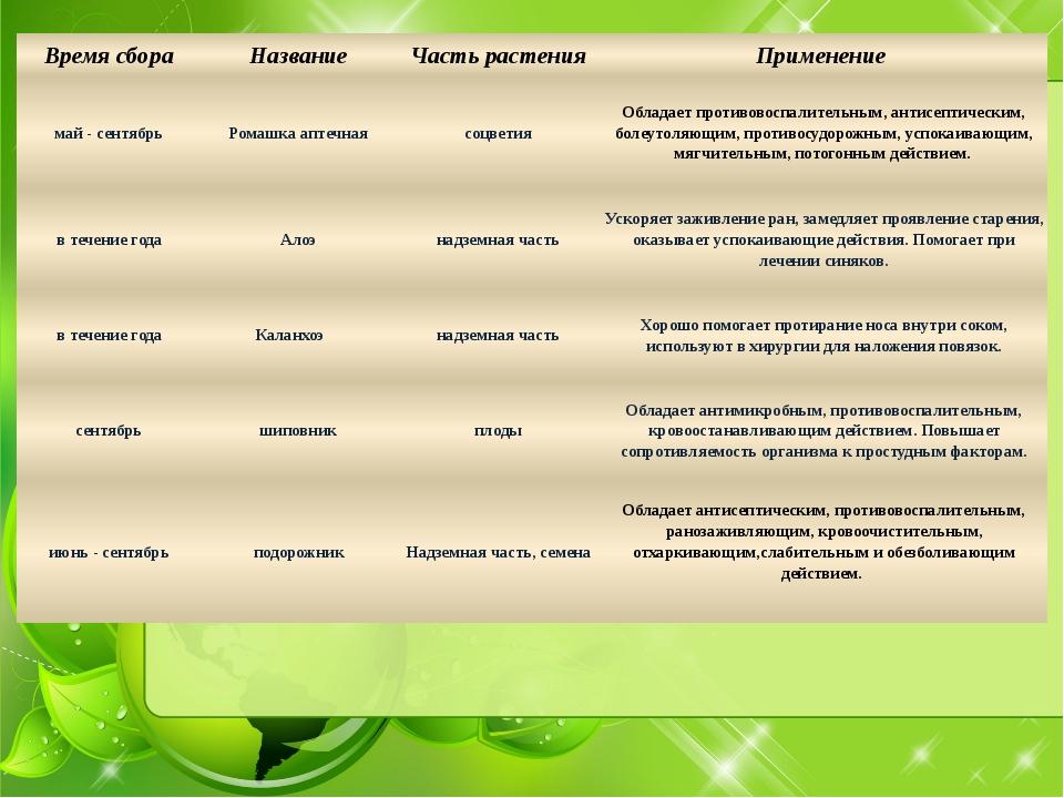 Время сбора Название Часть растения Применение май - сентябрь Ромашка аптечна...