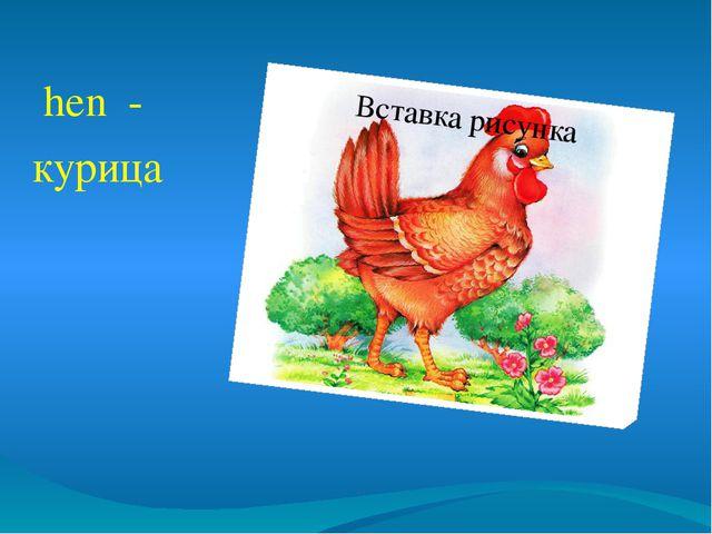 hen - курица