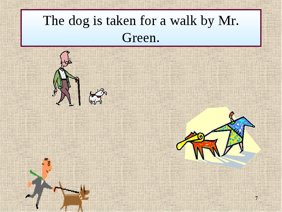 * The dog is taken for a walk by Mr. Green.