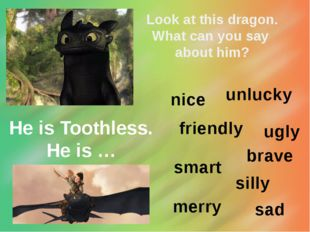 Look at this dragon. What can you say about him? He is Toothless. He is … unl