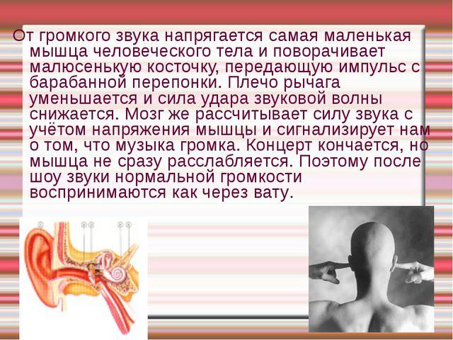 От громкого звука напрягается самая маленькая мышца человеческого тела и пово...