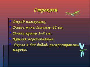 Стрекозы Отряд насекомых. Длина тела 1см4мм–12 см. Длина крыла 1–9 см. Крылья