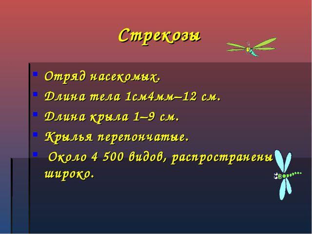 Стрекозы Отряд насекомых. Длина тела 1см4мм–12 см. Длина крыла 1–9 см. Крылья...
