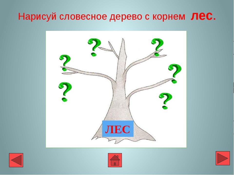 Нарисуй словесное дерево с корнем лес. ЛЕС