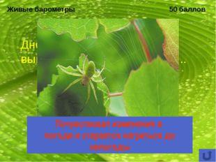Охраняемые природные территории 50 баллов Какой биологический заказник был ор