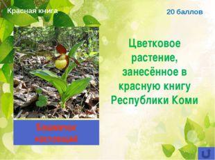 20 баллов Цветковое растение, занесённое в красную книгу Республики Коми Башм