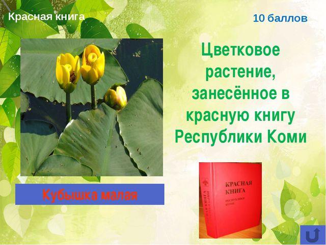 Красная книга 10 баллов Цветковое растение, занесённое в красную книгу Респуб...