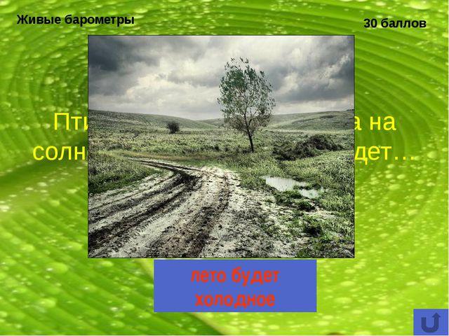 Охраняемые природные территории 30 баллов Какой национальный парк Республики...