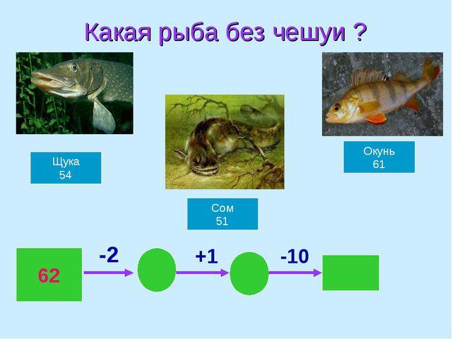 Какая рыба без чешуи ? Щука 54 Сом 51 Окунь 61 62 -2 +1 -10